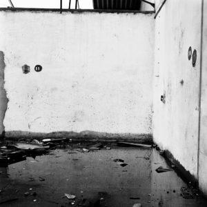 Murmurer#16, Mouna Karray